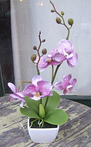 Künstliche Orchidee im Topf ca.30cm SONDERPREIS