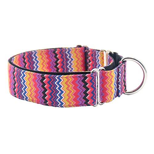 - EXPAWLORER Martingale Collars for Dogs, Heavy Duty Nylon Dog Collar Large