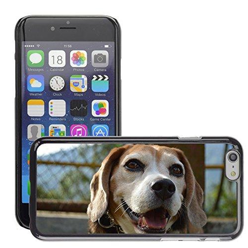 """Bild Hart Handy Schwarz Schutz Case Cover Schale Etui // M00134909 Hundetierhaustier // Apple iPhone 6 PLUS 5.5"""""""