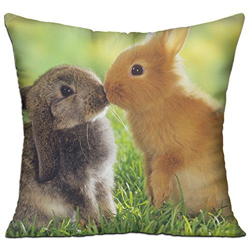 KKWODWCX Lovely Bunny Home Fashion Soft Canvas Polyster Throw Pillow Bolster Cushion Cover Square 18'' Decorative Pillowcase -