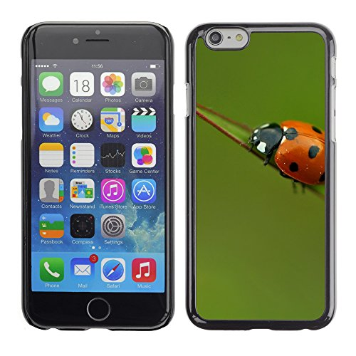 Premio Sottile Slim Cassa Custodia Case Cover Shell // V00003603 ladybird solitaire // Apple iPhone 6 6S 6G PLUS 5.5""