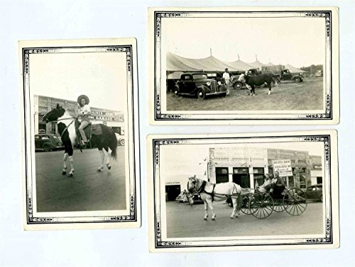 1941 Terrell Texas Photos Parade Horse & Buggy Hereford - Terrell Texas