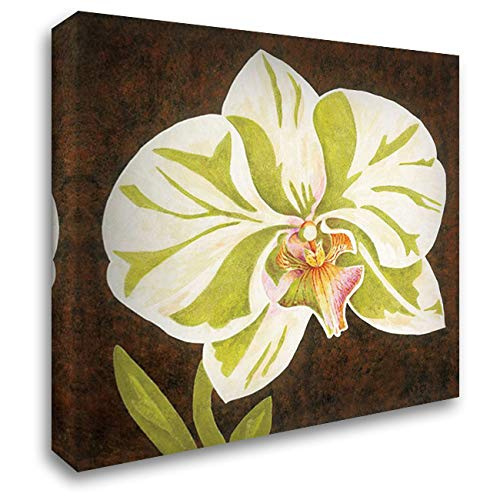 Surabaya Orchid Petites A 28x28 Gallery Wrapped Stretched Canvas Art by Shelby, Judy