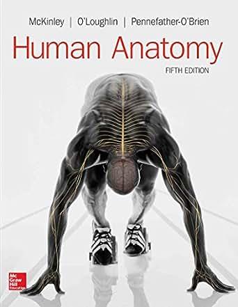 Human Anatomy Ebook Michael Mckinley Amazon Kindle Store