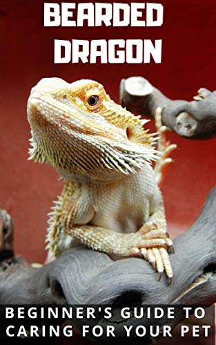 Bearded Dragon Care - Updated For 2019: Beginner's Guide to Caring for Your Pet