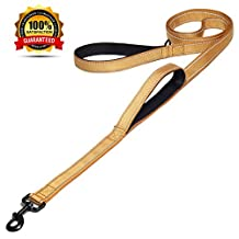 Maxpower Planet Dog Leash 2 Handles Extra Long 6ft Lead, Heavy Duty, Double Handle Greater Control Safety Training, Perfect for Medium and Large Dog, Dual Padded Handles, Golden
