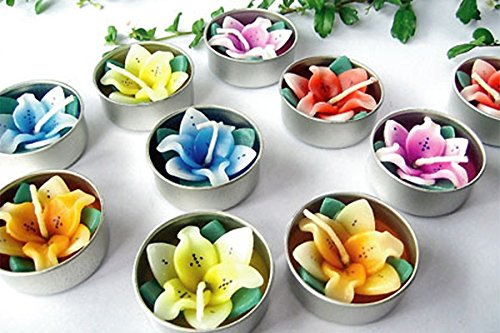 Candles flowers Lily flower 10 pcs/set (Minnie Mouse Cup Warmer compare prices)