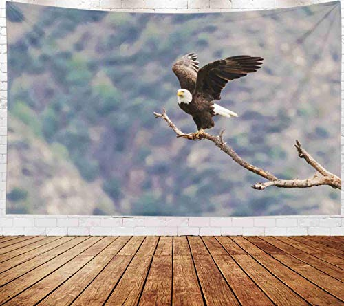 Yecationy Space Tapestry, Tapestry Psychedelic Tapestry 80x60 Inch Eagle Los Angeles Foothills Tapestry Wall Hanging Living Room Decoration Tapestries -
