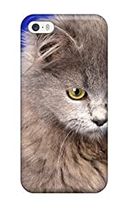 Hot Htz-3557DRAyihCS Case Cover Protector For Iphone 5/5s- Ash Gray Cat