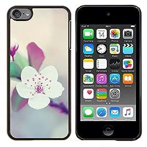 Apple Blossom Árbol floral de la primavera púrpura- Metal de aluminio y de plástico duro Caja del teléfono - Negro - iPod Touch 6