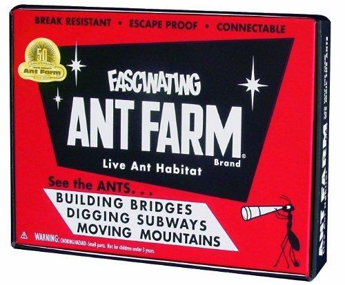 vintage ant farm - 5
