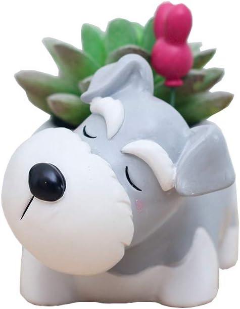 Youfui Home Decor Pot, Animal Succulent Planter Flowerpot for Home Office Desk Decoration (Sleep Schnauzer)