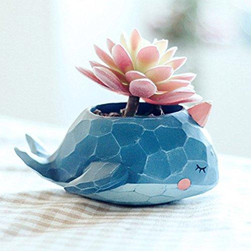 Cute Animal Shaped Cartoon Home Decoration Succulent Vase Flower Pot -- Mini Ceramic Planter for Succulents (Whale)