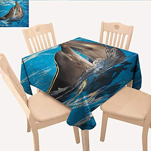- longbuyer Dolphin Printed Tablecloth Aqua Show Pair of Valentines Dolphins Dancing in Pool Animal Tenderness Love BBQ Tablecloth Blue Dark Taupe W 60