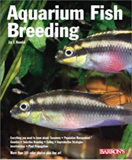 Aquarium Fish Breeding Pet Reference Books Ines Scheurmann