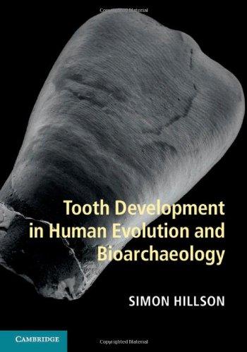 tooth development - 1