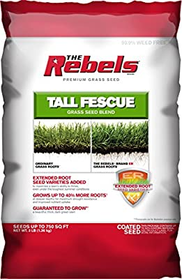 Pennington Rebel Tall Fescue Mixture Powder Coated Seed