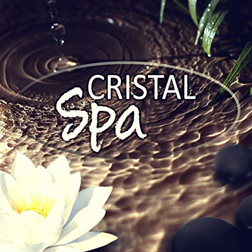 Amazon Lotus Flower Spa Music Tranquility Day Spa Music Zone