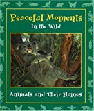 Peaceful Moments in the Wild, , 0970776810