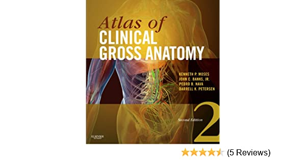 Amazon.com: Atlas of Clinical Gross Anatomy E-Book eBook: Kenneth P ...