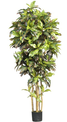 Nearly Natural 5211 Croton Silk Tree, 6-Feet, Green by Nearly Natural