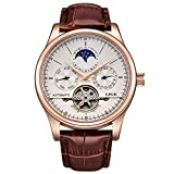 Affute Mens Automatic Mechanical Wrist Watches Stainless Steel Date Skeleton Tourbillon Watch (Brown Leather)
