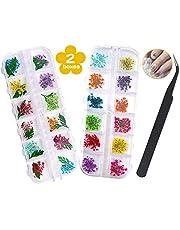 Gedroogde bloemen voor nagels - 2 dozen (36 stuks) Gedroogde bloemen voor hars ambachten, 24 bloemen en 12 bladeren 3d Nail Art Gedroogde bloemen Decoratie Sets, Hars Droge Bloemen Nail Accessoires met 1 Gebogen Pincet