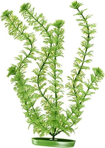 Marina Aquascaper Ambulia Large Plant, 12-Inch Hagen Plant