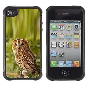 Be-Star único patrón Impacto Shock - Absorción y Anti-Arañazos Funda Carcasa Case Bumper Para Apple iPhone 4 / iPhone 4S ( Cool Awesome Nature Owl )