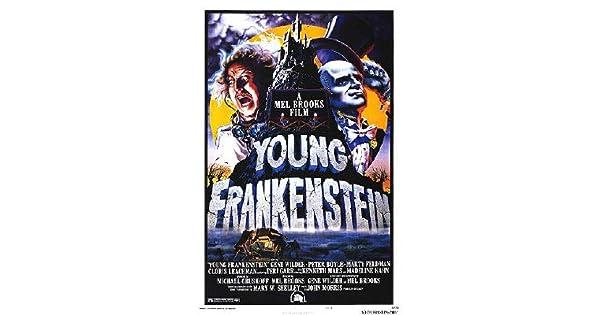 Amazon.com: Young Frankenstein – Póster de la película ...
