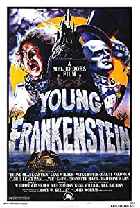Young Frankenstein - Movie Poster (Size: 27'' x 40'') Poster Print, 27x40