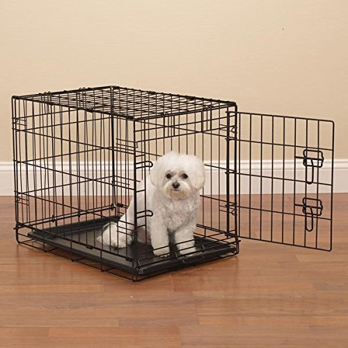 Easy Dual Latching Dog Crate, Large, Raspberry