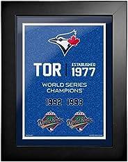 Toronto Blue Jays 12x16 World Series Empire Frame