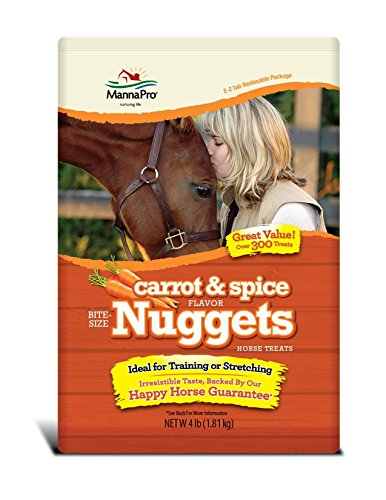 Manna Pro Carrot and Spice Bite Size Nuggets, 4 (Manna Pro Horse)