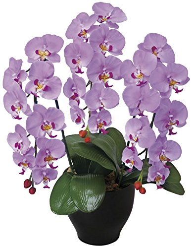 光触媒 造花 光の楽園 胡蝶蘭セリースL 21A100 B00XHQI41Q ラベンダー ラベンダー