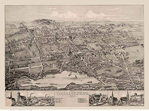 Wallingford Connecticut - 1881 - Birds Eye View Reprint