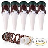 EYEFANCEE Automatic Watering System - Vacation Plant Waterer Slow Realease Watering Probe Stakes for Indoor Outdoor Houseplant, 6 Pack