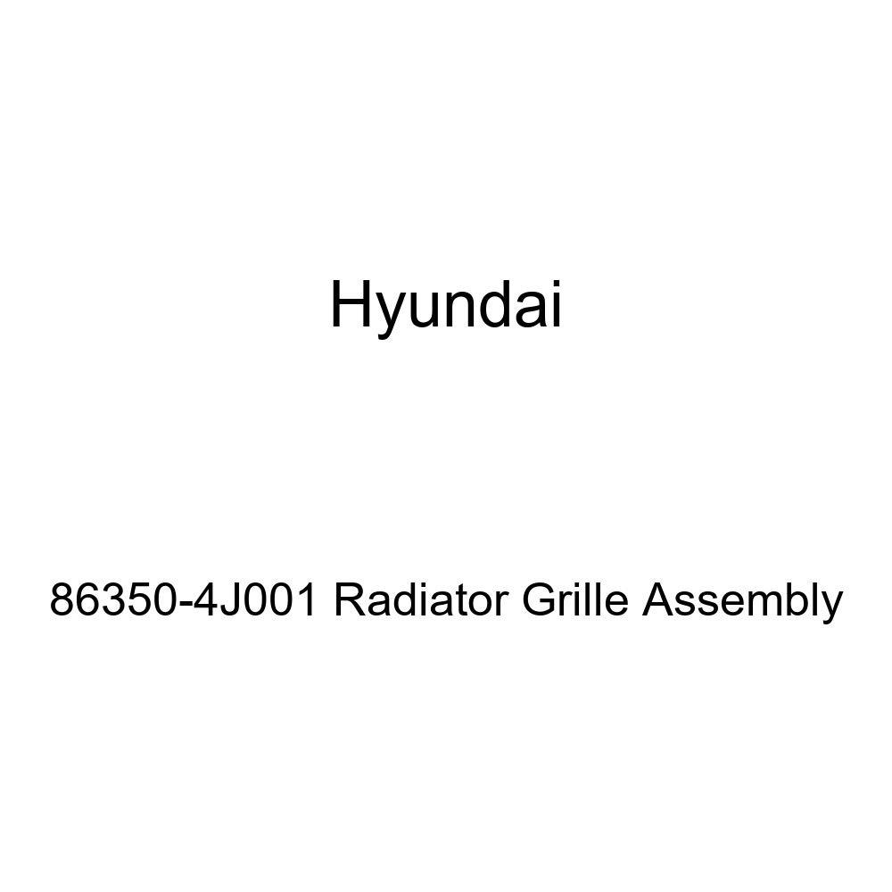 Genuine Hyundai 86350-4J001 Radiator Grille Assembly