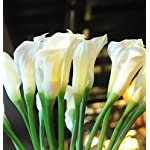 25-LARGE-Handmade-Real-Touch-Latex-Calla-Lilly-artificial-spring-flowers-for-arrangements-bouquets-weddings-and-centerpieces-Pack-of-5-Milky-White