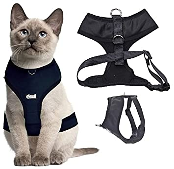 Pet Supplies : Dexil Luxury Cat Harness Padded and Water Resistant (Black L-XL) : Amazon.com