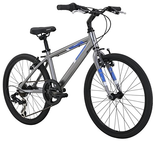 Diamondback Bicycles Insight 20 Complete Children's Performance Hybrid Bike, 20-Inch Wheels/One Size, Silver (Bike Wheel Size)