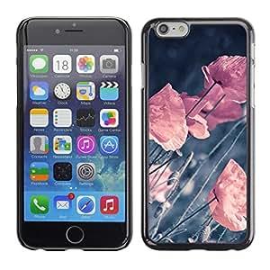 Apple (4.7 inches!!!) iPhone 6 Plus 5.5 , Radio-Star - Cáscara Funda Case Caso De Plástico (Retro Vignette Pastel Flowers)