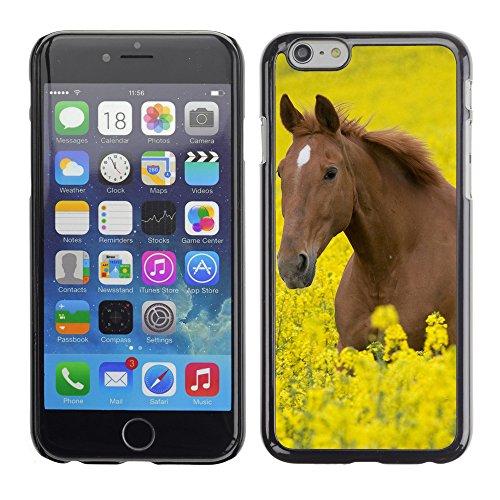 "Premio Sottile Slim Cassa Custodia Case Cover Shell // V00003435 cheval dans un champ de fleurs // Apple iPhone 6 6S 6G 4.7"""