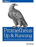 Prometheus: Up & Running: Infrastructure and