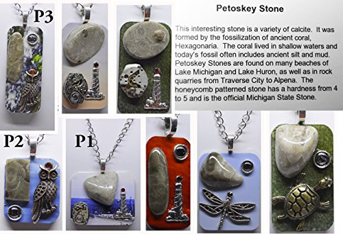 Petoskey Stone fossil pendant necklace jewelry recycled unisex (Stone Fossil Necklace)