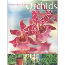 Orchids: A Complete Guide to Cultivation and Care