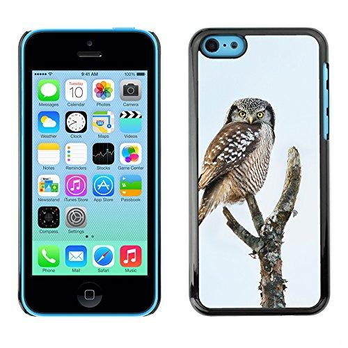 Premio Sottile Slim Cassa Custodia Case Cover Shell // F00013428 oiseau // Apple iPhone 5C