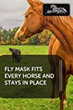 Kensington Fly Mask Web Trim — Protects Horses