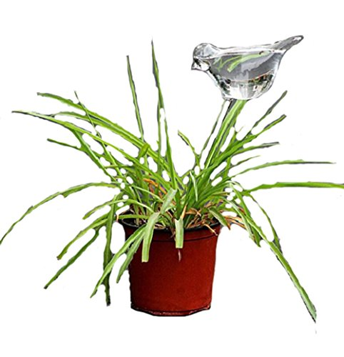 Bird Shaped Clear Glass Plant Flower Holiday Automatic Watering Spike Stake Water Feeder by zoele