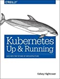 Kubernetes: Up and Running: Dive into the Future of Infrastructure